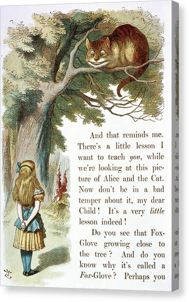 English And Literature Canvas Print - The Cheshire Cat by British Library