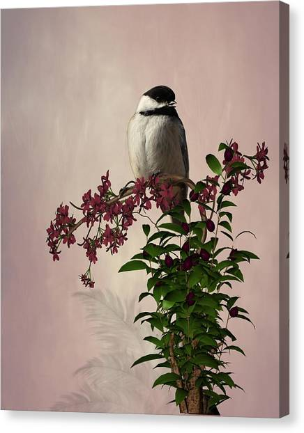 The Chickadee Canvas Print