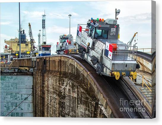 The Climbing Mule Of The Panama Canal Canvas Print