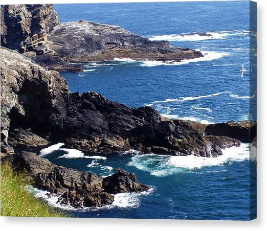 The Coast At Mizen Head Canvas Print
