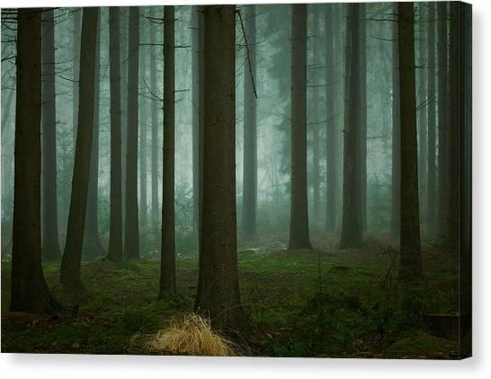 Foggy Canvas Print - The Cold, Dark Days Of Winter by Ellen Borggreve