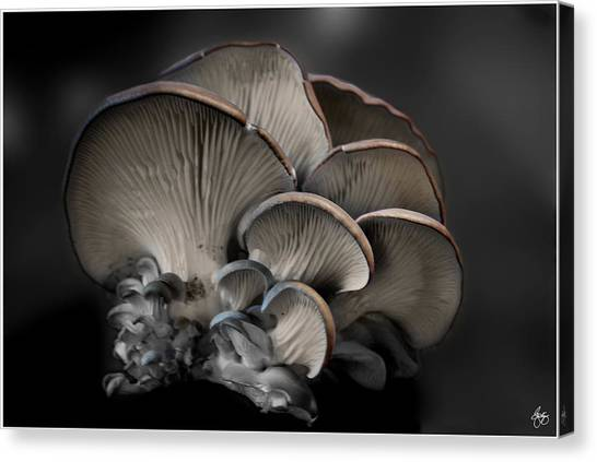 Painted Fungus Canvas Print