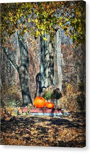 The Colors Of November Canvas Print