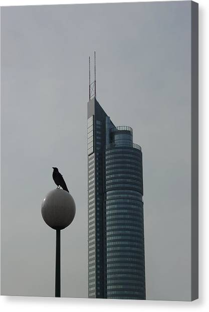Canvas Print featuring the photograph The Crow And The Milleniumtower In Winter by Menega Sabidussi