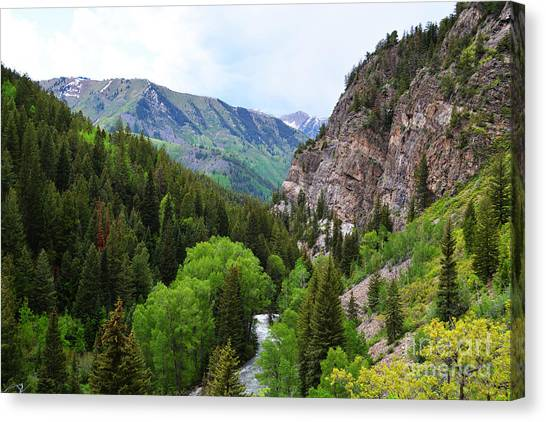 The Crystal River Canvas Print