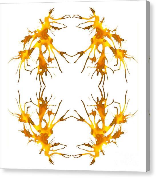 Kelpie Canvas Print - The Dance by Lyndsey Warren