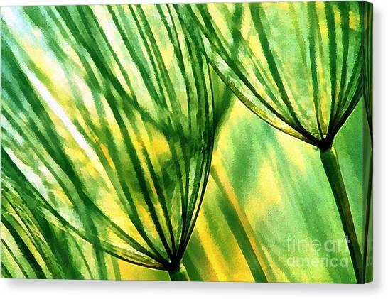 The Dandelion Canvas Print