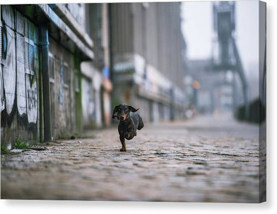 Industry Canvas Print - The Dark Side Of Hamburg by Heike Willers