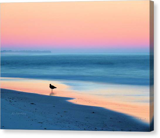 Seagulls Canvas Print - The Day Begins by JC Findley