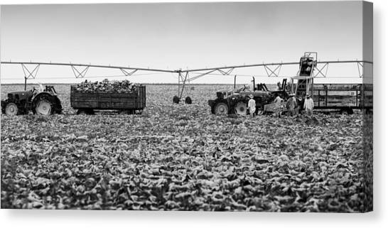 The Day On The Farm Canvas Print by Ricky L Jones
