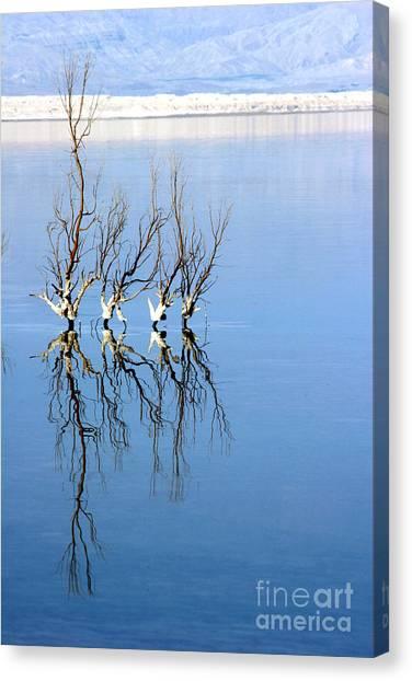 The Dead Sea Canvas Print by Arie Arik Chen