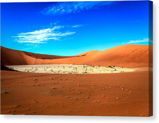 The Deadvlei Canvas Print