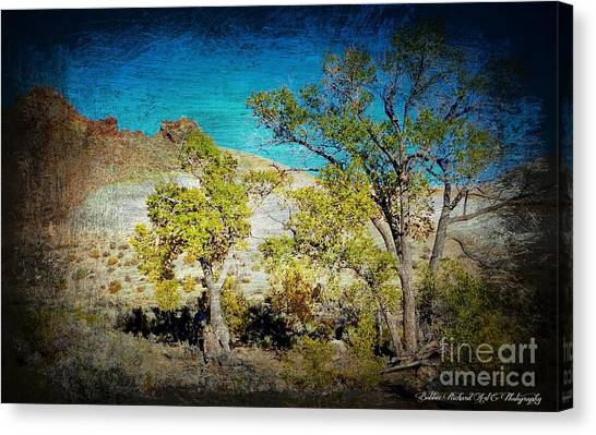 Matting Canvas Print - The Desert by Bobbee Rickard