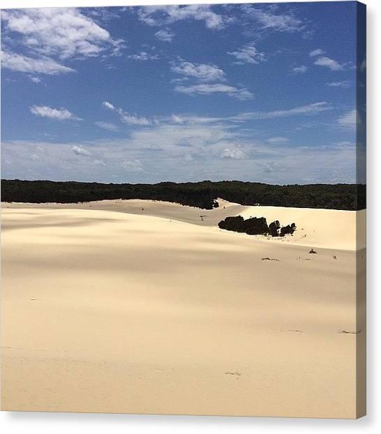 Sahara Desert Canvas Print - The Desert On Moreton Island #desert by Tony Keim