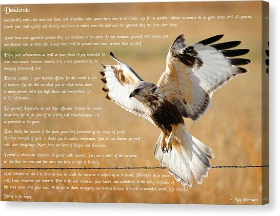 Canvas Print featuring the photograph The Desiderata With Hawk by Greg Norrell