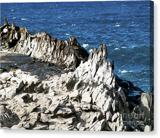 The Dragons Teeth I Canvas Print