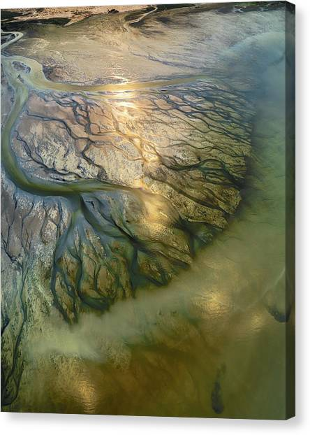 Deltas Canvas Print - The Earth Veins by Faisal Alnomas