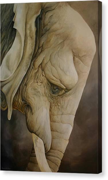 The Elder Canvas Print