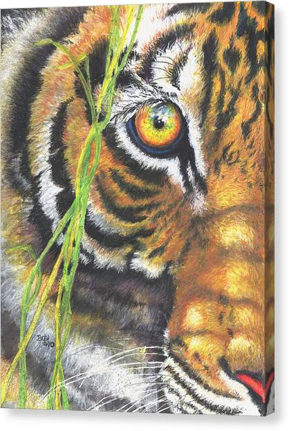 University Of Missouri Canvas Print - The Element Of Surprise by Beth Gramith
