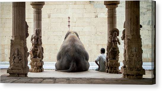 Temple Canvas Print - The Elephant & Its Mahot by