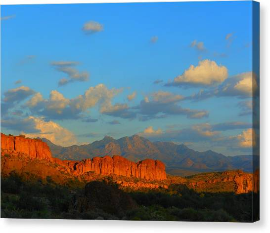 The Endangered West Canvas Print