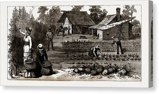 Garden Scene Canvas Print - The English Garden, Scenes In Rugby, The English Colony by Litz Collection