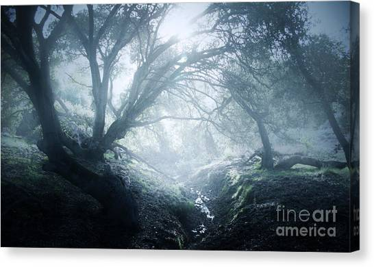The Ents Are Going To War Canvas Print by Kyle Walker