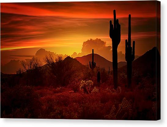 Sonoran Desert Canvas Print - The Essence Of The Southwest by Saija  Lehtonen