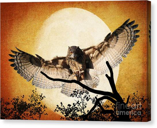 The Eurasian Eagle Owl And The Moon Canvas Print