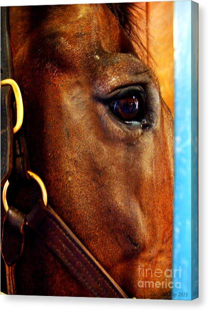 The Eye Of A Champion Da Hoss Canvas Print
