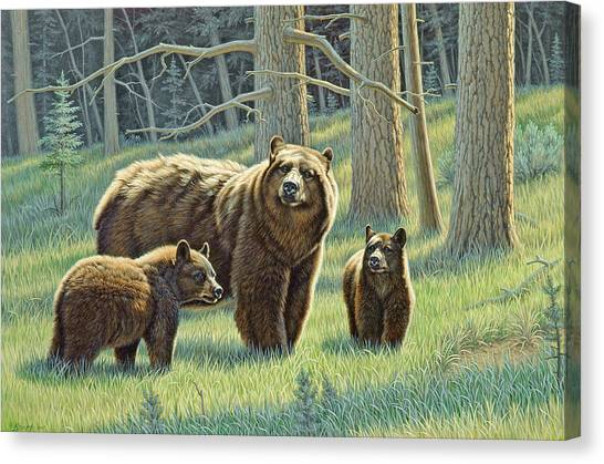Bears Canvas Print - The Family - Black Bears by Paul Krapf