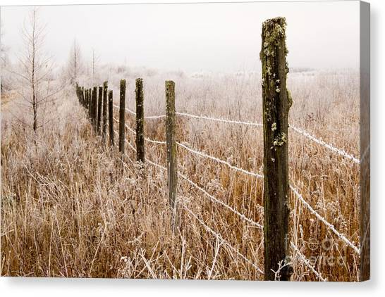 The Fence Still Stands Canvas Print