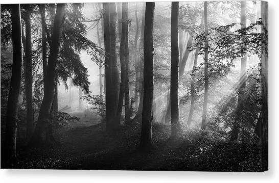 Atmosphere Canvas Print - The First Light... by Nina Pauli