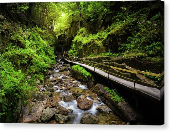 The Flume With Flowing Water Canvas Print