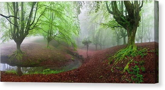 Verde Canvas Print - The Forest Maravillador IIi by Juan Pixelecta