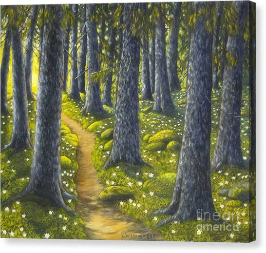 Mossy Forest Canvas Print - The Forest Path by Veikko Suikkanen