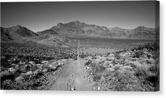 Dirt Road Canvas Print - The Forever Road by Peter Tellone