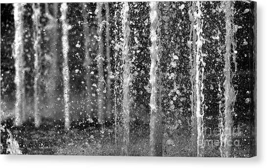 The Fountain Canvas Print