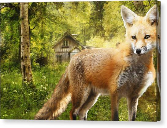 Woodland Canvas Print - The Fox by Pati Photography