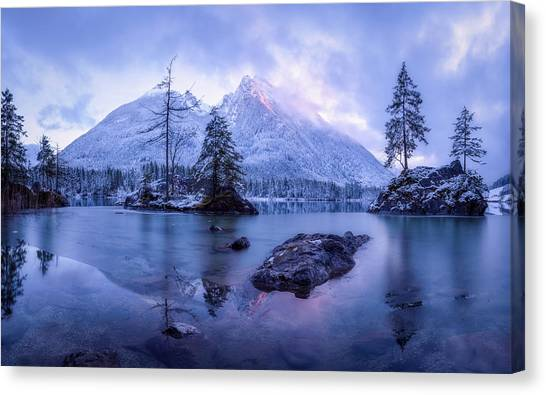 Fir Trees Canvas Print - The Frozen Mountain by Daniel Fleischhacker