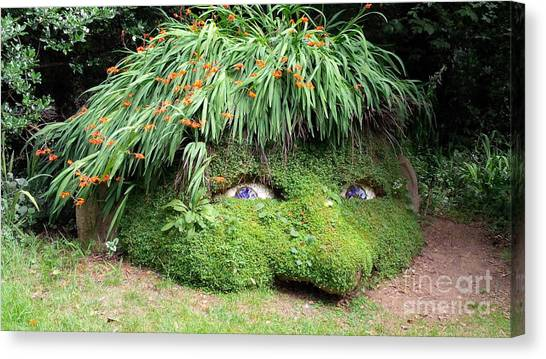 The Giant's Head Heligan Cornwall Canvas Print