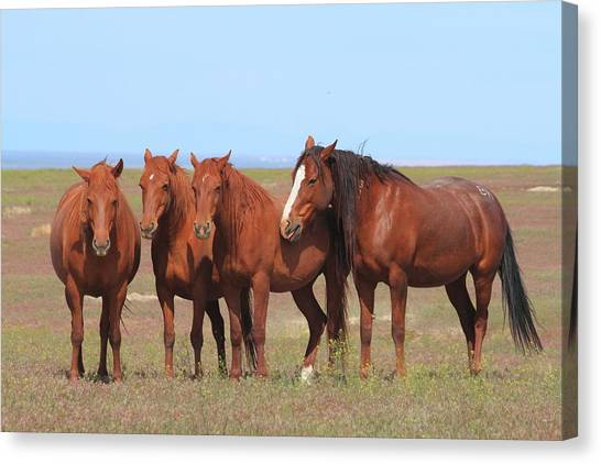 The Girls Club Canvas Print by Gene Praag