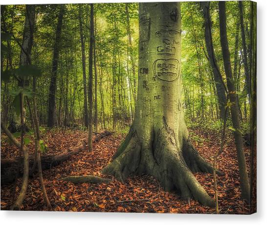 Seasonal Canvas Print - The Giving Tree by Scott Norris
