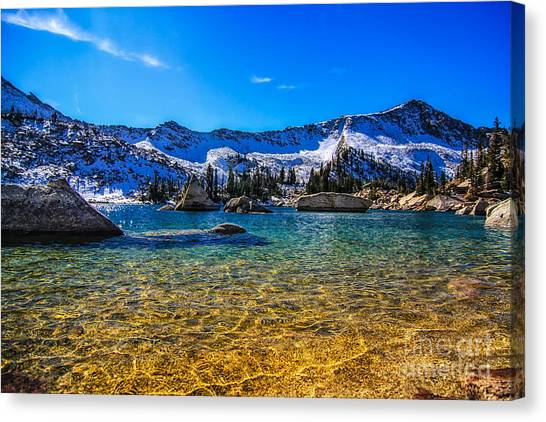The Gold Lake Bottom Canvas Print by Mitch Johanson