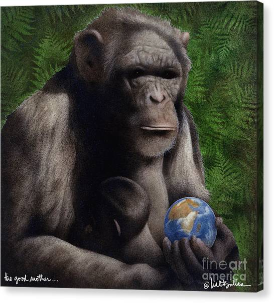 Chimpanzee Canvas Print - The Good Mother... by Will Bullas