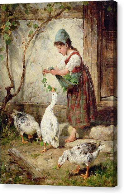 Geese Canvas Print - The Goose Girl by Antonio Montemezzano