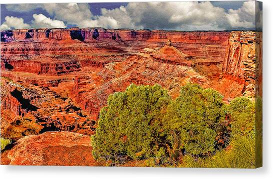 The Grand Canyon Dead Horse Point Canvas Print