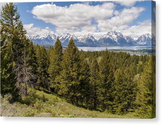 Wy Canvas Print - The Grand Tetons From Signal Mountain - Grand Teton National Park Wyoming by Brian Harig