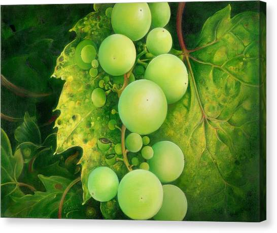 The Grapes Canvas Print