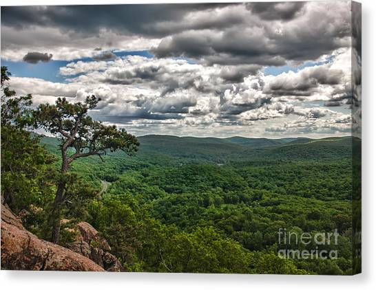 The Great Valley Canvas Print